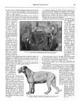 Meccano Magazine Français August (Août) 1933 Page 181