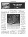 Meccano Magazine Français July (Juillet) 1934 Page 173