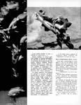 Meccano Magazine Français August (Août) 1958 Page 6